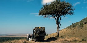Game Drives and Walks